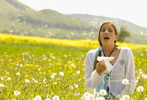 food Allergy Services, allergy clinic, running nose, allergy testing for seasonal allergies, Outdoor allergies, Indoor allergies and food allergiesallergies, Allergy Services, allergy clinic, running nose, allergy testing seasonal allergies Outdoor allergies Indoor allergies